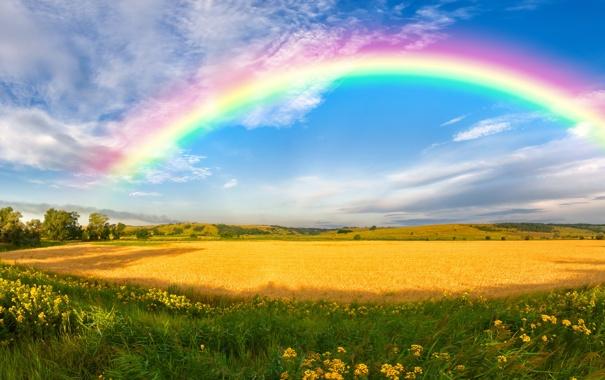 Фото обои зелень, деревья, цветы, ветер, холмы, радуга, панорама