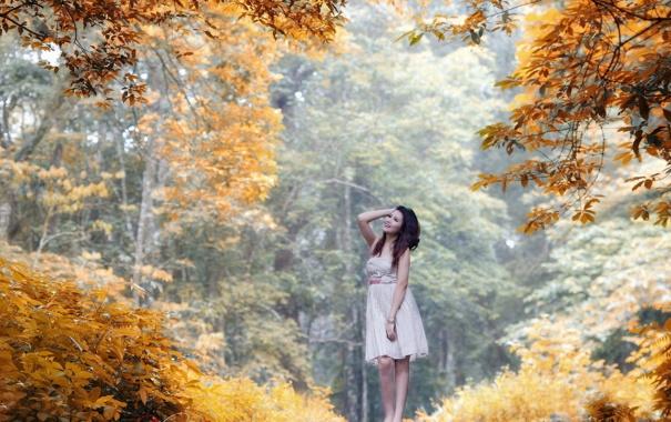 Фото обои лес, девушка, деревья, радость, улыбка, Осень, платье
