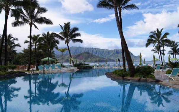 Фото обои пейзаж, природа, пальмы, бассейн