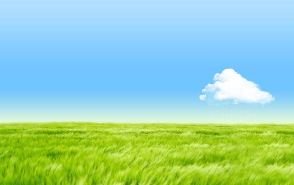 Фото обои поле, небо, трава, облако
