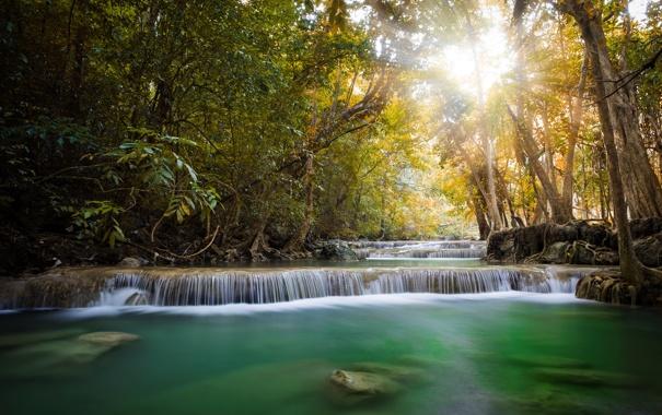 Фото обои джунгли, лучи солнца, деревья, водопад, пейзаж, река