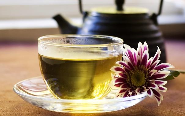 Фото обои цветок, зеленый, чай, чайник, чашка, блюдце