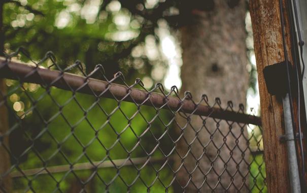 Фото обои сетка, забор, ограда