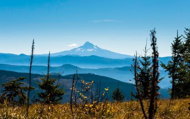 Фото обои небо, трава, горы, растение, вершина
