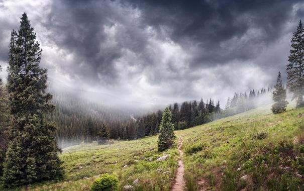 Фото обои пейзаж, горы, туман