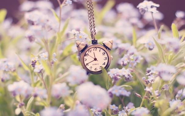 Фото обои часы, цепочка, стрелки, цифры, будильник