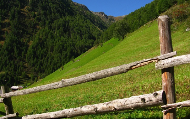 Фото обои деревья, горы, холмы, забор, италия