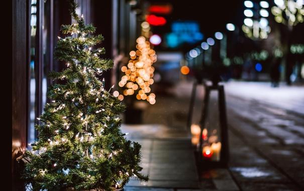 Фото обои зима, свет, ночь, ветки, город, огни, улица