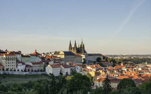Фото обои небо, дома, Прага, Чехия, панорама, собор Святого Вита, Пражский град