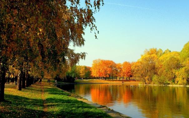 Фото обои осень, небо, трава, листья, деревья, радость, озеро