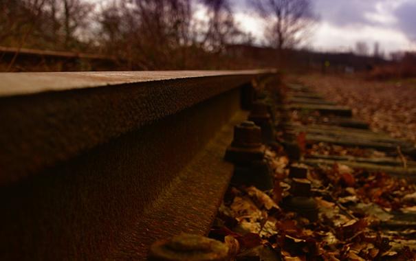 Фото обои metal, autumn, railroad tracks, oxide