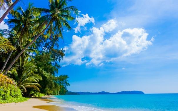 Картинки природа море пляж