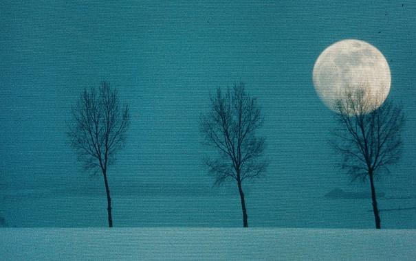 Фото обои пейзаж, стиль, цвет, материал