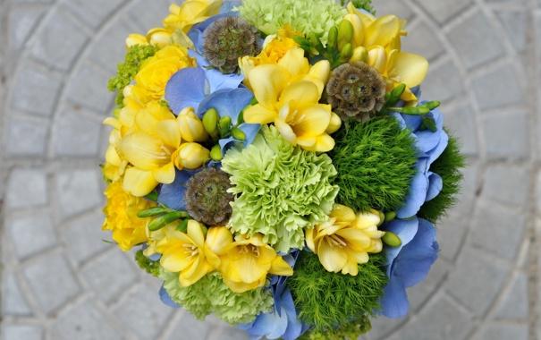 Фото обои фото, Цветы, Бутон, Букет, Розы, Гортензия, Фрезия
