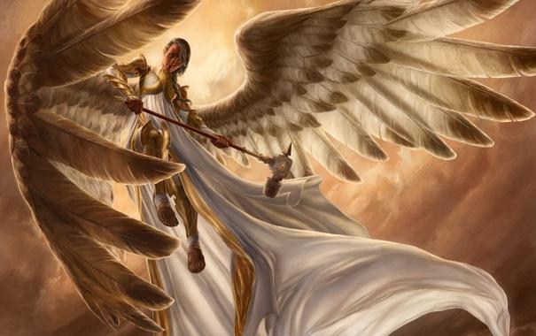 Фото обои wings, feathers, look, female, hammer
