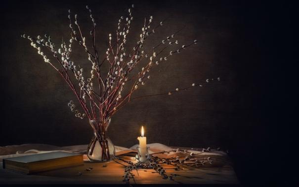 Фото обои ветки, свеча, натюрморт