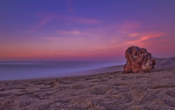 Фото обои море, небо, вода, природа, гладь, камни, дерево