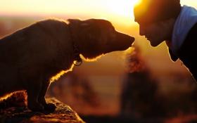 Картинка настроение, человек, собака