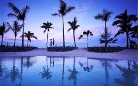 Картинка пальмы, океан, вечер, двое, силуэты