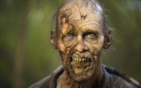 Обои zombie, makeup, The walking Dead