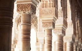 Обои узор, архитектура, колонна