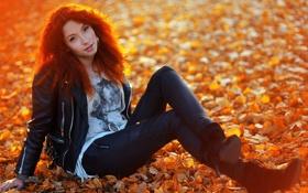 Картинка осень, листья, девушка, природа, девушки, рыжая, краски осени