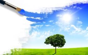 Обои зелень, поле, лето, небо, солнце, природа, креатив