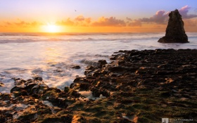 Обои море, закат, скала, побережье, photographer, прилив, Kenji Yamamura