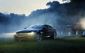 Картинка машина, авто, трава, деревья, природа, туман, фары
