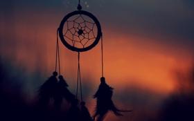 Картинка вечер, перья, силуэт, талисман, амулет, Dreamcatcher, ловец снов