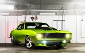 Обои машина, тачка, зеленый, Rides Green Monster 31, Chevrolet