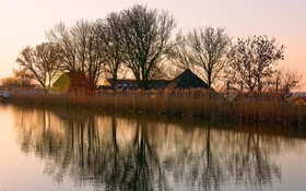 Картинка осень, река, дома, камыш