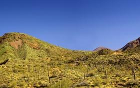 Картинка небо, горы, пустыня, кактусы, дикий запад