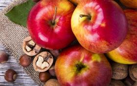 Картинка листья, яблоки, орехи, фундук