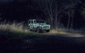 Картинка камуфляж, лес, brabus, benz, mercedes, g65, ночь