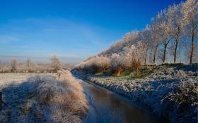 Обои зима, иней, поле, деревья, канал