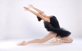 Картинка девушка, пуанты, балерина