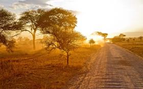 Картинка дорога, пейзаж, утро, Африка