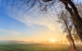 Обои morning, Sunrise, foggy