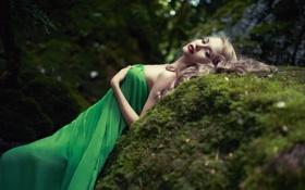 Обои мох, камень, лес, девушка, платье, макияж
