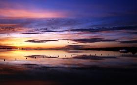 Обои пейзаж, река, горизонт, небо, фото, вечер, цвета