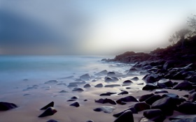 Картинка море, вода, свет, деревья, природа, гладь, камни
