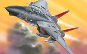 Обои истребитель, tomcat, ф-14