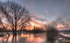 Обои Cathedral, water, Wiltshire, Salisbury, floods