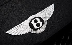 Картинка капли, макро, фон, логотип, тачки, эмблема, bentley