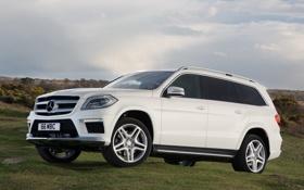 Обои car, машина, небо, Mercedes-Benz, white, AMG, универсал