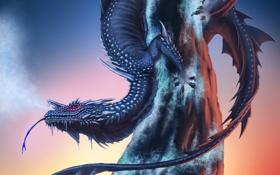 Картинка холод, дерево, дракон, арт