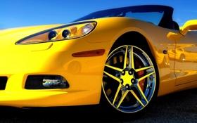 Обои машина, кабриолет, авто, желтая