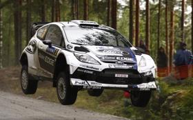 Обои белый, деревья, прыжок, Ford, Форд, WRC, передок