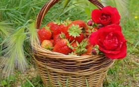 Обои ягоды, розы, клубника, корзинка